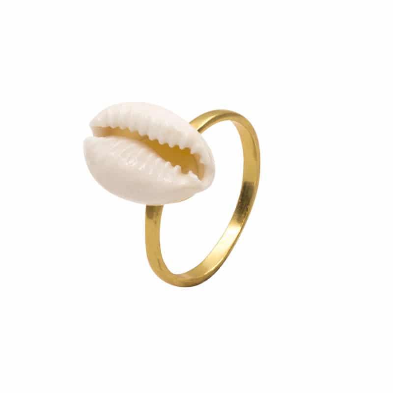 anillo cowrie oro